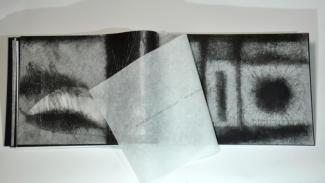 Müller-Fries, Eberhard: Fiona Macleod – Dream Meadows