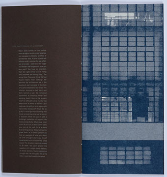 Ken Botnick: Mary Jo Bang -the illusion of physicality (The Bauhaus-Book)